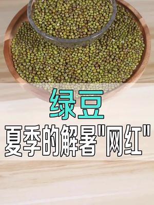 绿豆,夏季的解暑佳品。#77吃货节 @磊叔问答