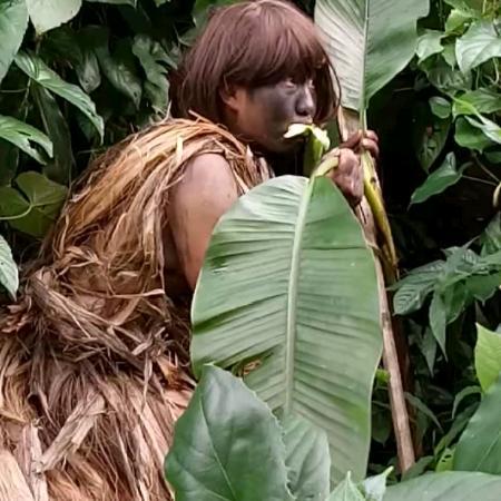 雨林野人哥